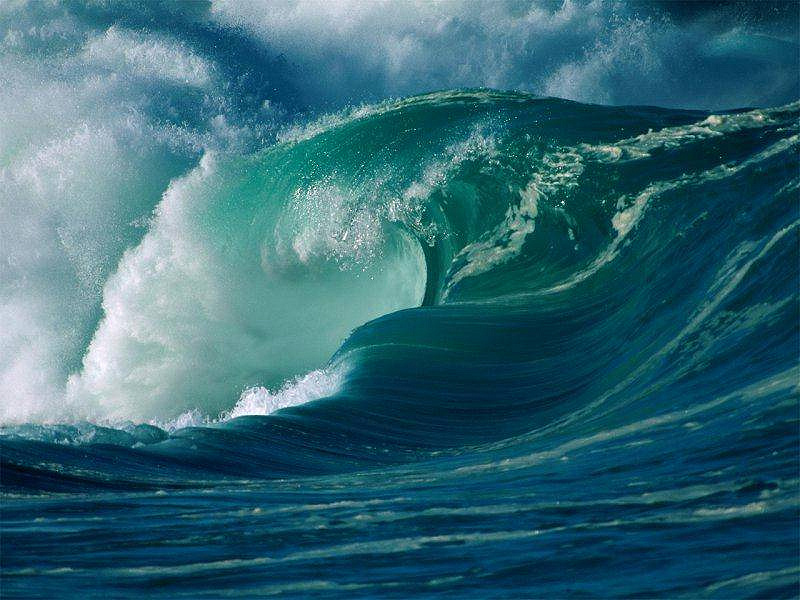 Gulf Surf Resort Motel Nokomis Fl